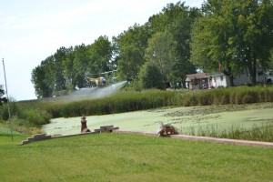 September Herbicide Treatment